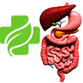 лекарство от язвы желудка